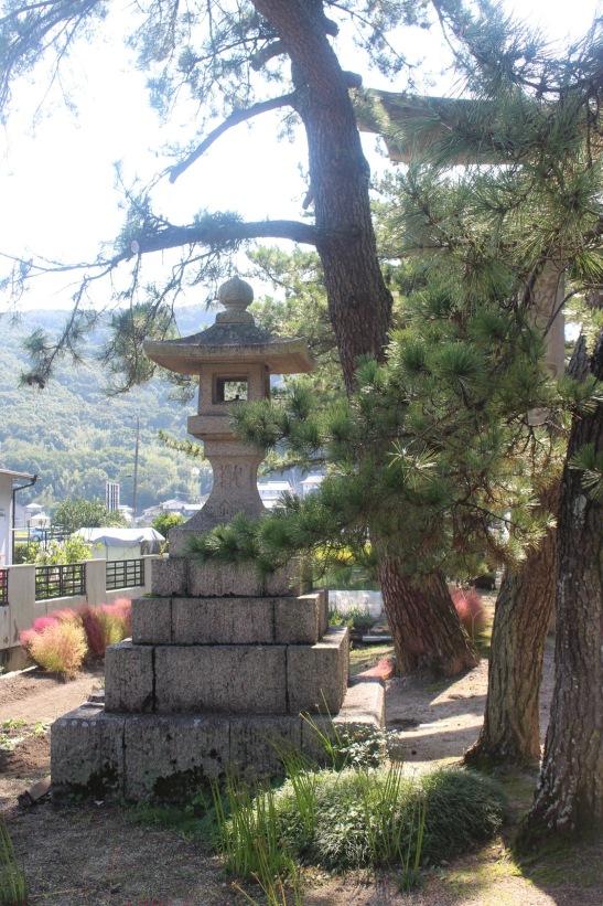 kibitsu_pine_trees